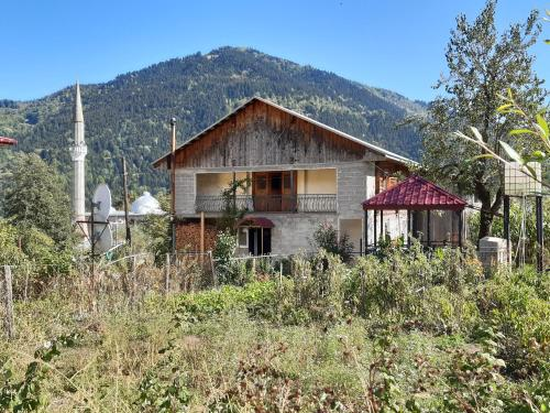Bachana - Khulo