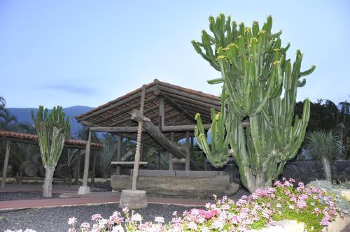 Crta El Puertito N 2, 38500 Güimar, Tenerife, Spain.