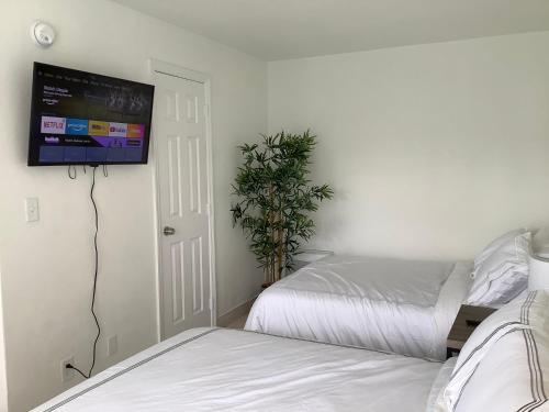 Hotel Motel Lauderdale Inn - image 7