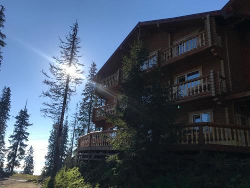 Alpin Eco Chalet & Wellness - Hotel - Dragobrat