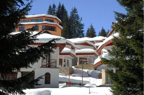 Ski Villa in Pamporovo Forest - Chalet - Pamporovo