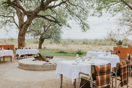 . Mohlabetsi Safari Lodge