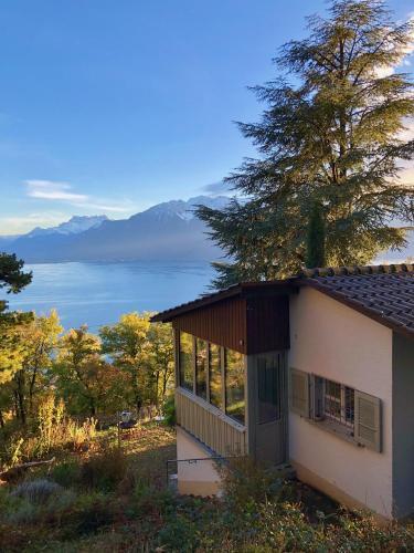 Lavaux Lodge, little piece of heaven, unique view - Accommodation - Chardonne