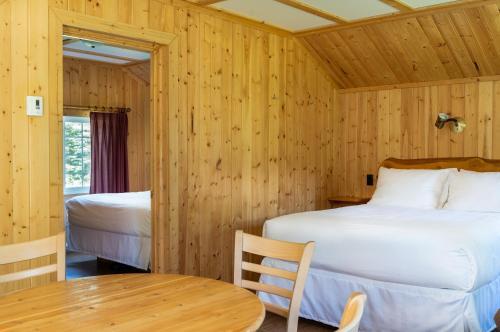 Pine Bungalows - Accommodation - Jasper