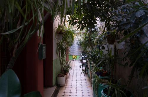 Pagration Youth Hostel, Pension in Athen