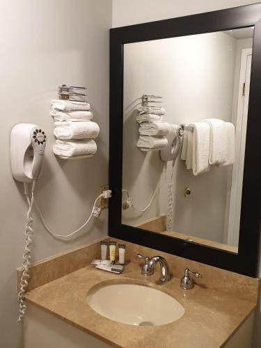 Riverland Inn & Suites - image 5