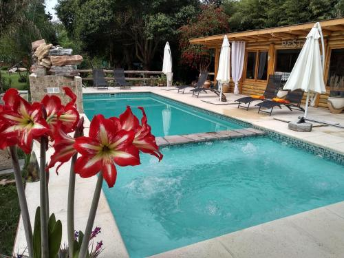 Pualy Resort & Spa by DECK