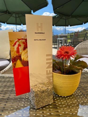 Hotel Belmont - Imst-Gurgltal