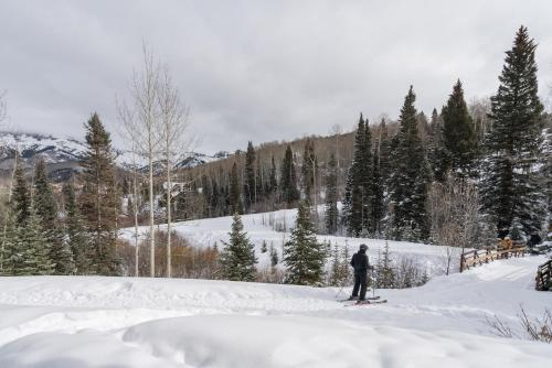 Villas at Tristant by Alpine Lodging Telluride - Accommodation