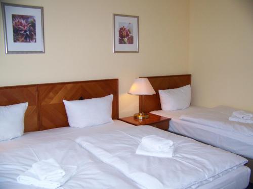 Hotel Amadeus Central photo 38