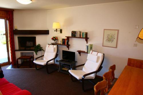 Greppons COSY & MOUNTAIN apartments by Alpvision Résidences - Apartment - Veysonnaz