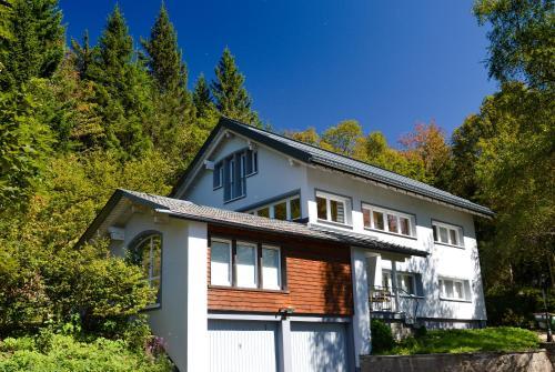 Schwarzwaldhimmel - Apartment - Feldberg