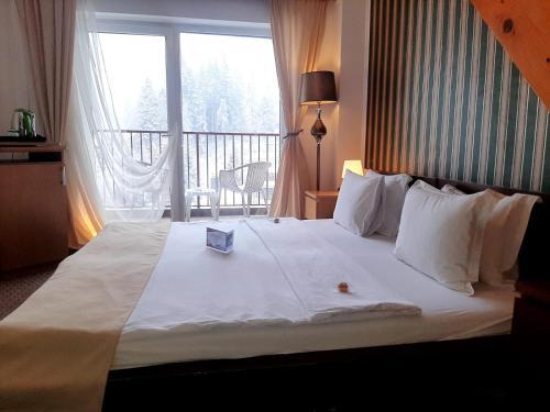 . Atrium Hotel Mountain View Predeal