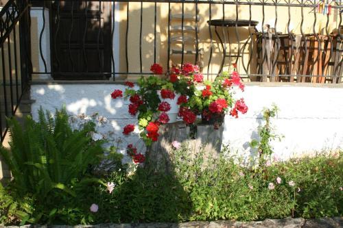Фото отеля Xenios Loutra Village Karnagio