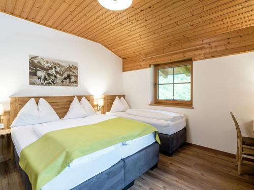 Apartment Alpensteinbock Saalbach C Hinterglemm