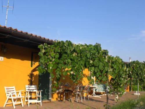 . Sunny Farm Apartment in Santa Maria della Versa