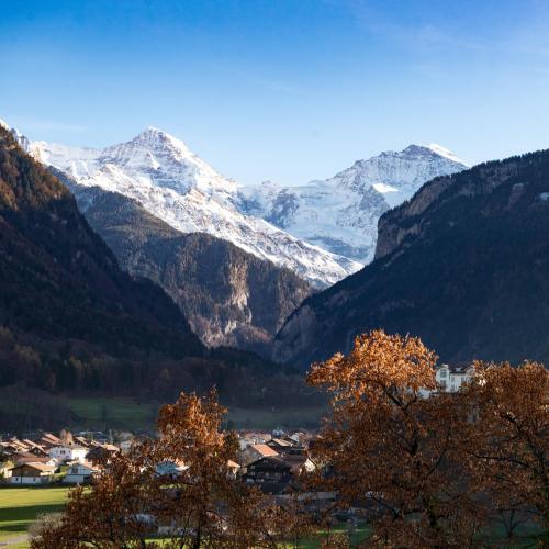 Swiss Holiday House - Hotel - Wilderswil bei Interlaken