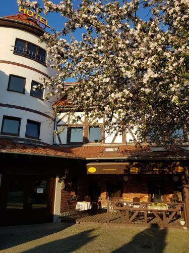 . Amadeus Hotel Zielona Góra