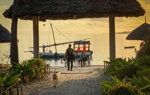 . Big Blu Mafia Island Dive Resort