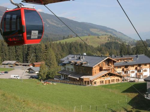 Panorama Chalet 9 - Apartment - Hollersbach im Pinzgau