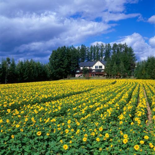 Adagio Hokkaido
