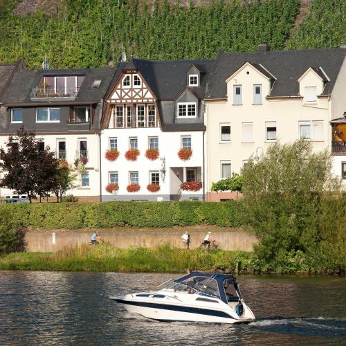 Mosel Panorama - Apartment - Zell an der Mosel