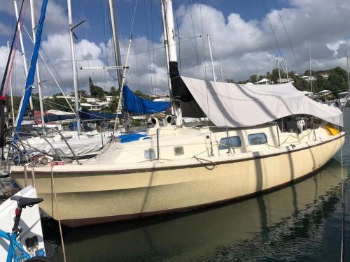 Séjour à bord d'un voilier type studio - Hôtel - Pointe-à-Pitre