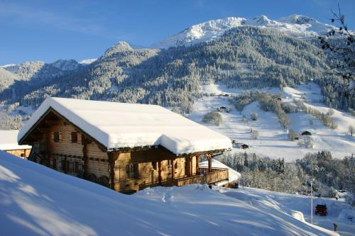. Apartment with 2 bedrooms in Hauteluce with wonderful mountain view furnished garden and WiFi 800 m from the slopes