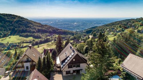 Haus Schauinsland - Apartment - Sasbachwalden