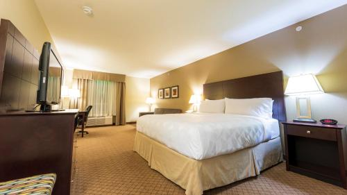 Holiday Inn Hotel and Suites-Kamloops, an IHG Hotel - image 7