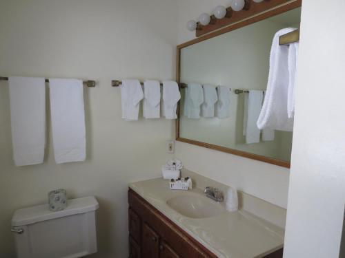 Bridge Bay Resort - Redding, CA 96003