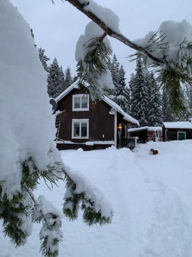 Holiday House in Lapland, Överkalix - Chalet