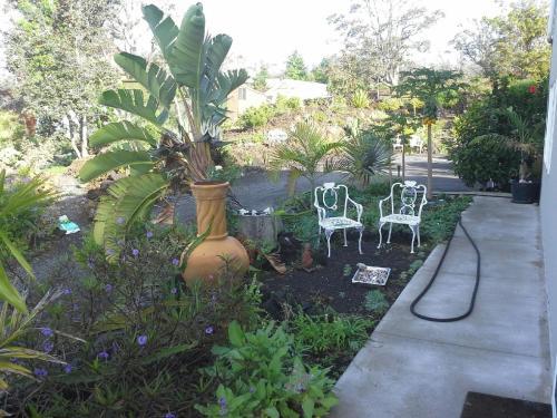 the Terraces A Kahuku Ahupua'a Farm And Retreat - Captain Cook, HI 96737
