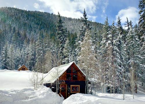 Pioneer Guest Cabins - Accommodation - Crested Butte