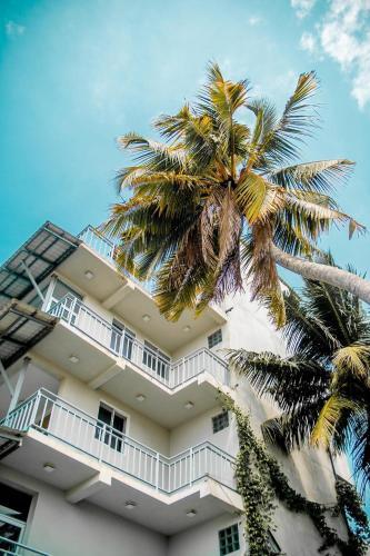 Seals Harbor Hotel