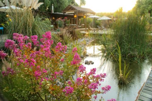 Barrica Lodge - Accommodation - Santa Cruz