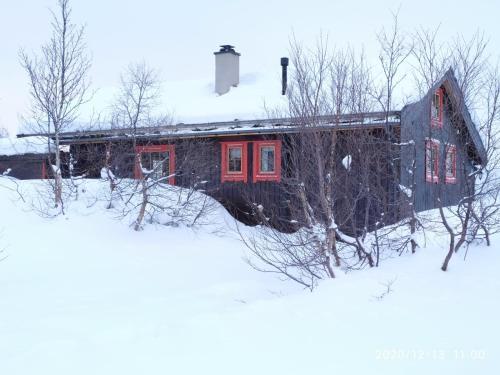 Mountain Cabin - Vågsli