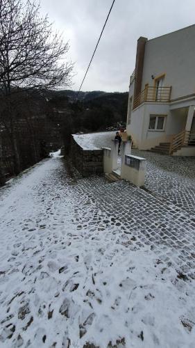 Casa Das Oliveiras - Manteigas - Photo 3 of 56