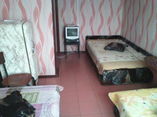 Север  Трехместный номер с общей ванной комнатой