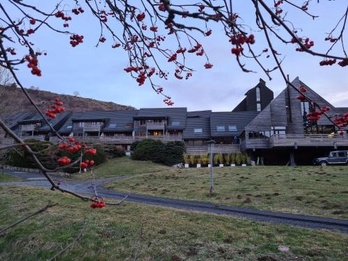 . Sancy Resort