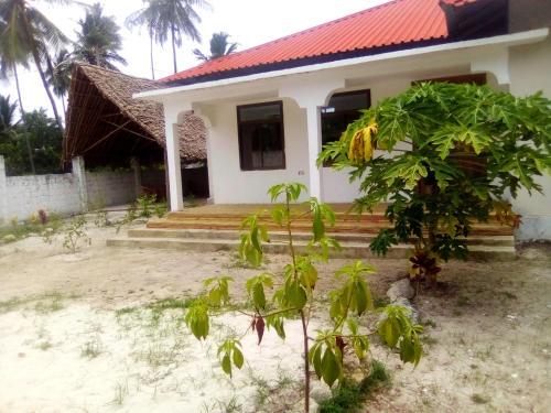Tabasam Green House
