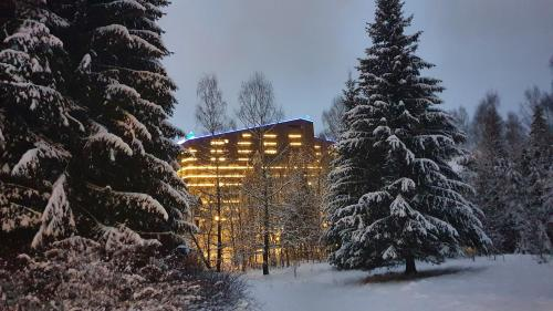 Apartament 2711 , Alpin Resort - Accommodation - Poiana Brasov