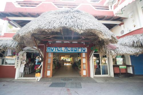 Acuario, Puerto Escondido
