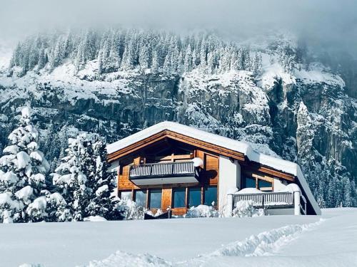Edelweiss Bella Vista - Apartment - Flims