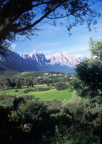 Località Su Gologone, 0825 Olinea, Sardinia, Italy.