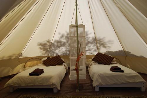 Accommodation in Alora
