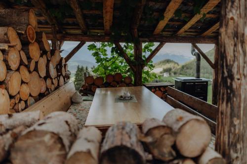 Natur Appartement Riesen - Apartment - San Lorenzo di Sebato