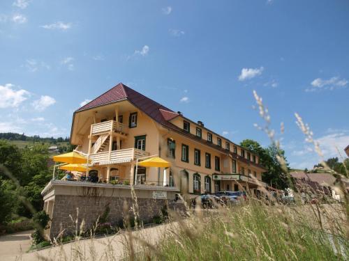 Grüner Baum Naturparkhotel & Schwarzwald-Restaurant - Hotel - Todtnau