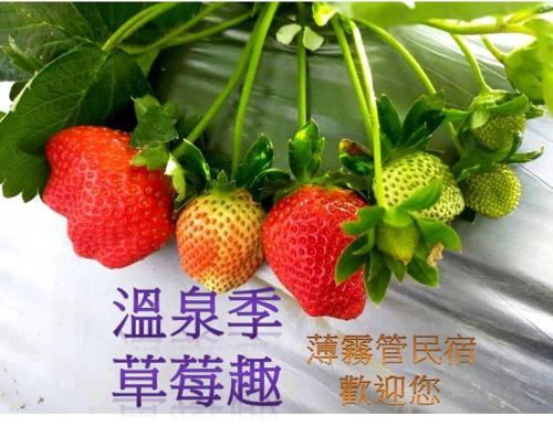 Miaoli Sanyi Bo Wu Guan Homestay