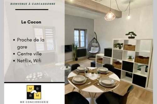 Le Cocon - Netflix - Centre ville - Location saisonnière - Carcassonne